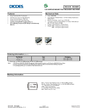 RS1M/MB image