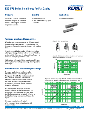 ESD-FPL-13 image